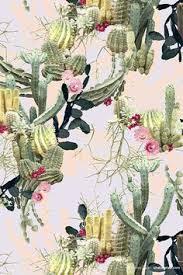 February printColourway 1© Shelley Steer   <b>Cactus</b> art, <b>Cactus</b> ...
