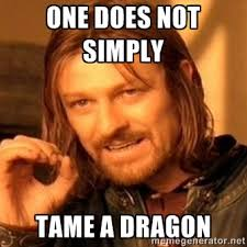 One does not simply Tame a dragon - one-does-not-simply-a | Meme ... via Relatably.com