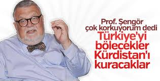 Celal Şengör: Türkiye'nin gidişatı beni korkutuyor