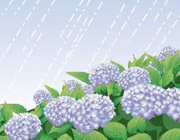 「梅雨 イラスト」の画像検索結果