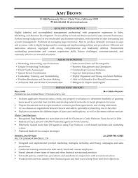 buyer resume doc sample understanding big picture marketing to leasing and related