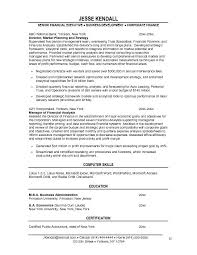 free financial vice president  vp  resume example
