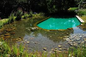 natural pool with gravel