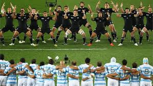 Image result for argentina pumas vs all blacks 2011