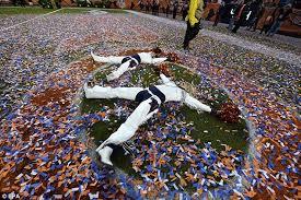 Resultado de imagen de 2016 carolina panthers vs denver broncos Cheerleaders