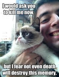 Kill Me meme origin - PandaWhale via Relatably.com