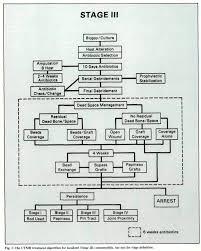 adult chronic osteomyelitis 1 the utmb treatment algorithm for localized stage iii osteomyelitis
