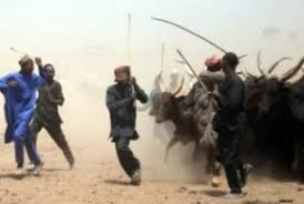 Image result for Cattle rustler