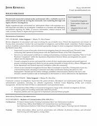 professional summary for police officer police resume beautician professional summary for police officer professional summary for police officer