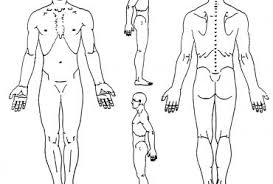 diagram for body pain   wedocablepain body chart diagram