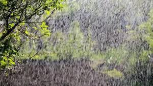 Bildresultat för sommarregn