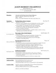microsoft word resume sample template microsoft word resume sample