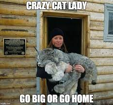 Image tagged in cat lady,big cat - Imgflip via Relatably.com