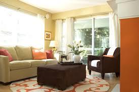 shag rug living room contemporary