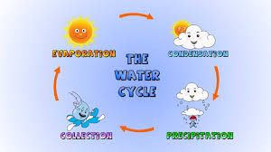 the water cycle  how rain is formed lesson for kids   youtube