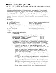 resume example for professional profile  seangarrette coresume summary example resumecareerobjectivecom  x examples of professional summary for resume career   resume example for professional