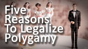 Image result for polygamy a gift from God