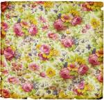 Images & Illustrations of chintzy