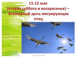 Resultado de imagen para 9 мая Международный день мигрирующих птиц