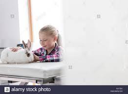 <b>Cute</b> girl looking at rabbit on bed at <b>veterinary</b> clinic Stock Photo ...