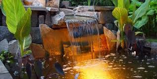 pond lighting ideas. canna lilies koi pond and waterfall switzeru0027s nursery landscaping northfield lighting ideas e