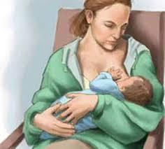 Dòng sữa mẹ