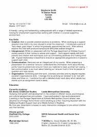 cover letter skill set resume examples examples of skill set for cover letter builder cv example resume builder software template professional examplesskill set resume examples large size