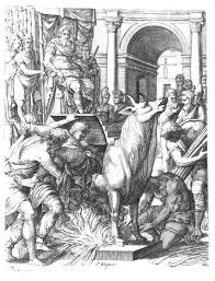 Phalaris - Wikipedia