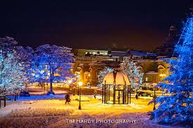 Image result for christmas lights in harrogate