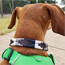 Hand Stitched Dog Collar at Price 500 INR/Pair in Kanpur | <b>AISLING</b> ...