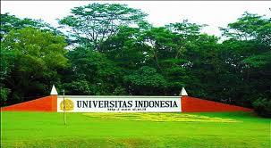 Hasil gambar untuk gambar universitas indonesia