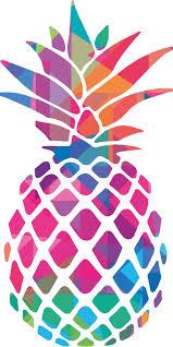 Introduction | <b>Pineapple</b> Powercorp