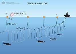Image result for drifting fishing method
