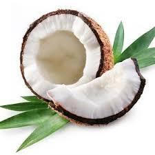 dr.organik coconut series ile ilgili görsel sonucu