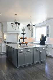 Gray And White Kitchen Designs 17 Best Ideas About Gray And White Kitchen On Pinterest Home