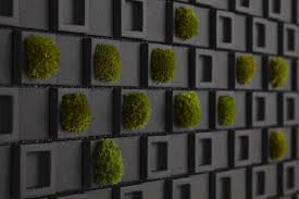 kitchen wall tiles design  black living wall backsplash