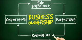 the type of ownership you use for your business has a big impact the type of ownership you use for your business has a big impact