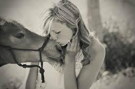 """Résultat de recherche d'images pour """"citations chevaux"""""""