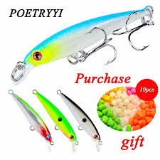 <b>1Pcs Floating Wobblers Minnow</b> Fishing lure 10cm 8g Crankbait ...