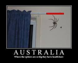 Australia | Know Your Meme via Relatably.com