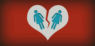 Image result for same sex visitation rights