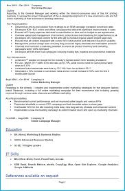 digital marketing cv example writing guide and cv template digital marketing cv example page 2 cv template