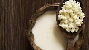 Resultado de imagen para kefir leche caucaso