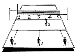 setting diagram volleyball hand placements   printable wiring        volleyball setting zones diagram on setting diagram volleyball hand placements