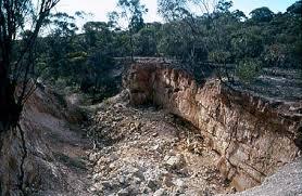 Image result for image greater bendigo national park