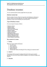 how professional database developer resume must be written how entry level database developer resume