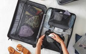 12 Best <b>Packing Cubes</b> for <b>Travel</b> (2020) - Nomad Paradise