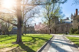 Princeton essay      CollegeVine blog