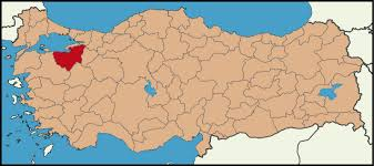Image result for bursa haritasi