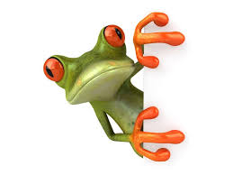 <b>3d</b>-animals_frog | Cute Frogs | Frog wallpaper, <b>Funny frogs</b>, Cute frogs